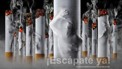 World No Tobacco Day: The Best Creative ads for anti-tobacco move