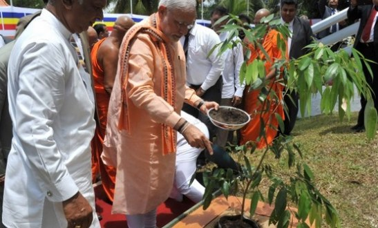 Prime Minister Narendra Modi launched tree plantation drive on World Environment Day