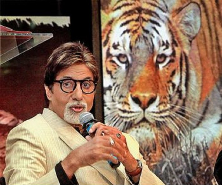 Big B Amitabh Bachchan to become Maharashtra Tiger Ambassador