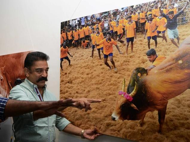 Indian Film Actor Kamal Haasan bats for jallikattu