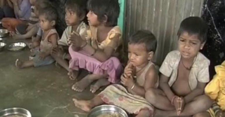 49187 run risk of starvation death in Odisha