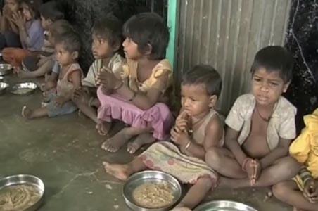 49187-run-risk-of-starvation-death-in-Odisha