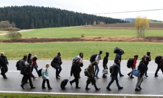 German Companies Ready To Hire Refugees Survey Says
