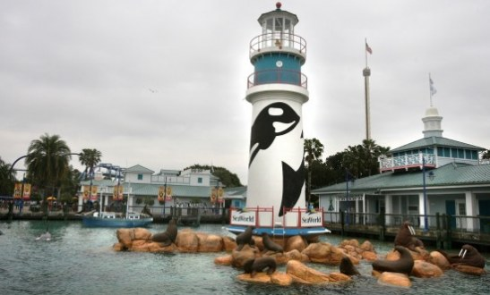 Seaworld Orlando Seeing Shortfall International Visitors