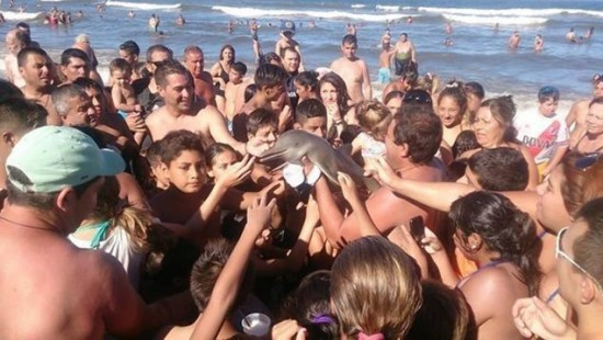 Young-Dolphin-Dies-When-Taking-Selfie-Mob-In-Argentina
