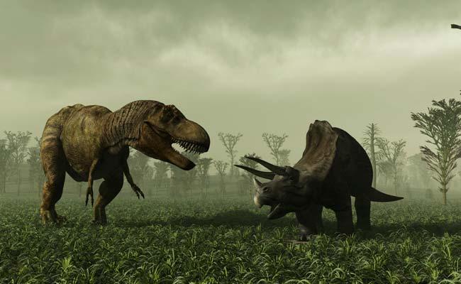 230-million-year-old-dinosaur-footprint-found-in-spain
