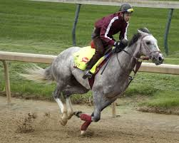 Feisty-Lani-To-Become-First-Japan-Based-Horse-In-Preakness