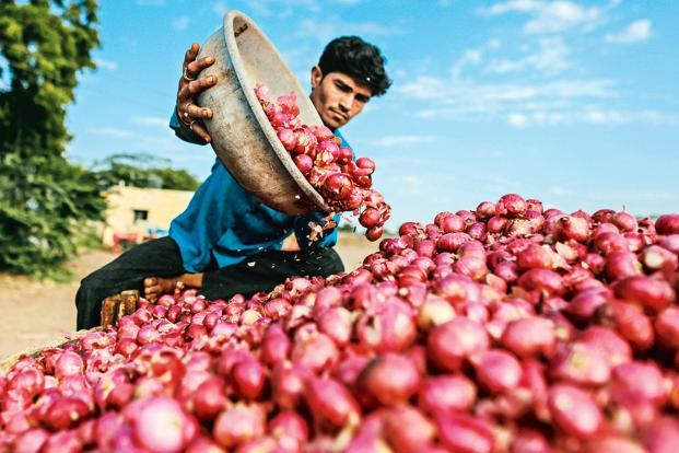 Demonetisation impact: Onion rates fall down of notebandi