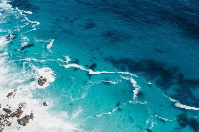 Improve the health of  ocean