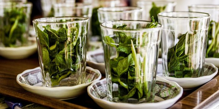 Kenya Researchers Explore Herbal COVID-19 Cure